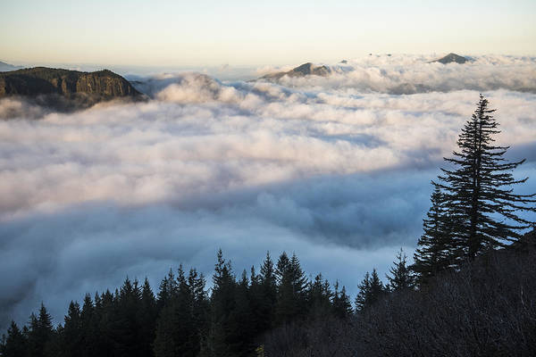 Photograph - Above The Fog by Robert Potts