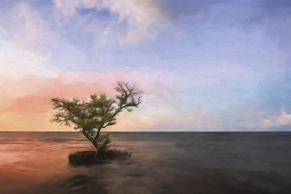 Cypress Digital Art - Above The Tide II by Jon Glaser
