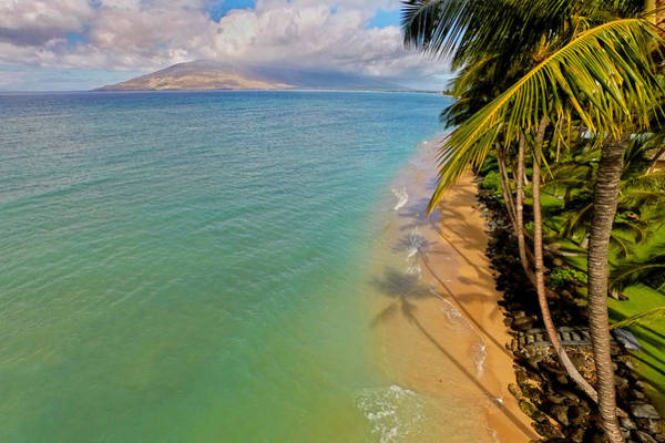 Kihei Photograph - Above The Trees by James Roemmling