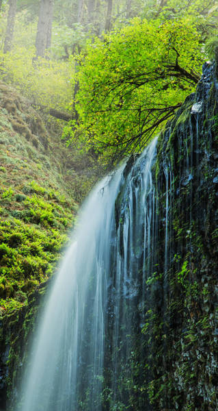 Wall Art - Photograph - Above The Waterfall by Angie Vogel