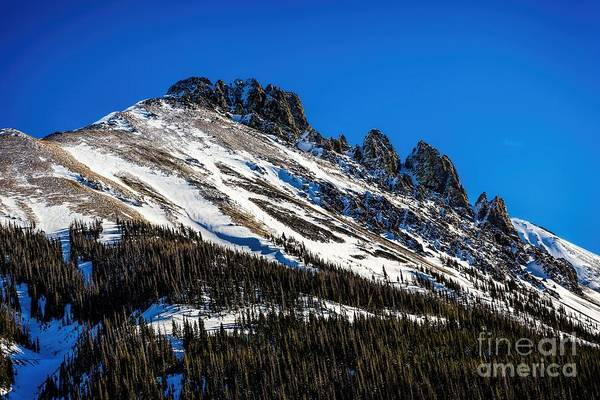 Photograph - Above Timberline by Jon Burch Photography