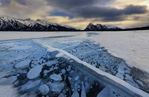 Photograph - Abraham Lake Ice Bubbles by Dan Jurak