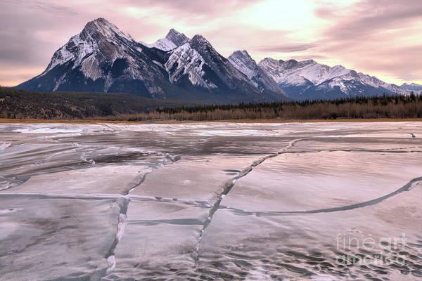 Photograph - Abraham Lake Ice Sheets by Adam Jewell