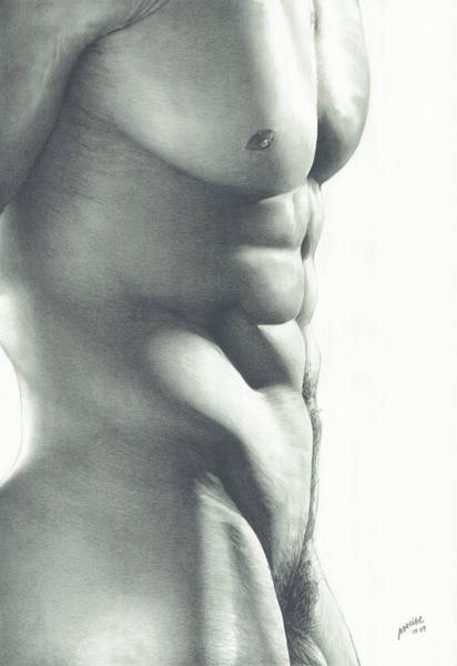 Male Nude Drawing - Abs-olutely by Maciel Cantelmo