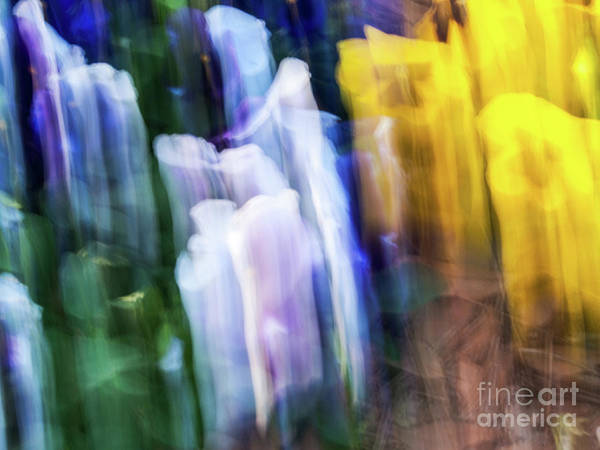 Photograph - Abstract-5 by Charles Hite