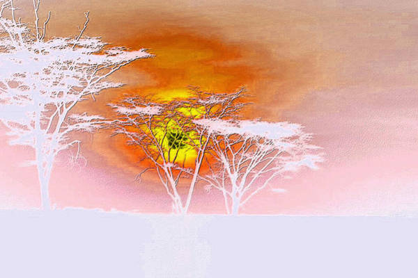 Photograph - Abstract African Landscape by Robert G Kernodle
