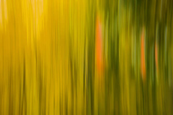 Wall Art - Photograph - Abstract Blur Number 1 by Steve Gadomski