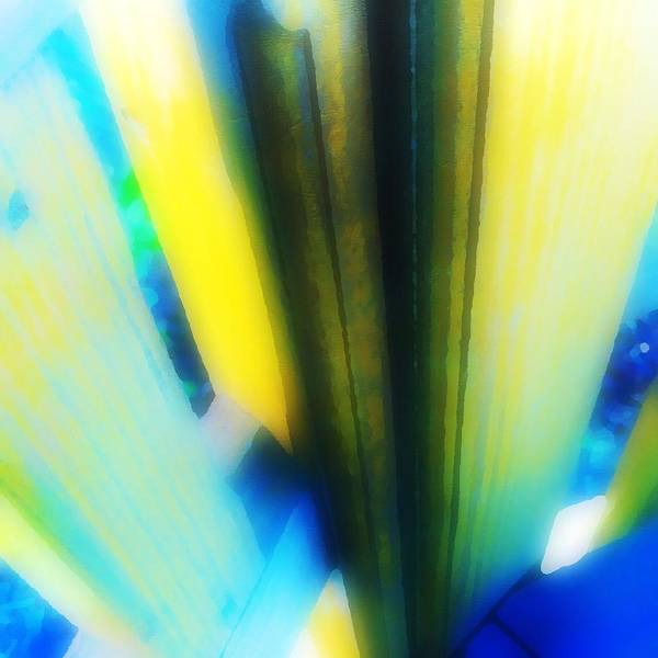 Aqua Tower Digital Art - Abstract Borealis by Jeff Stadden