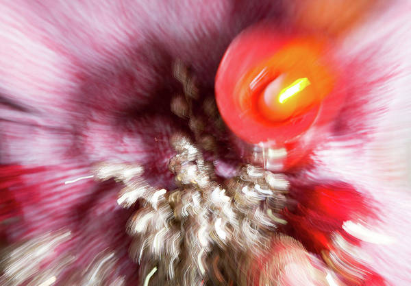 Wall Art - Photograph - Abstract Christmas 4 by Rebecca Cozart
