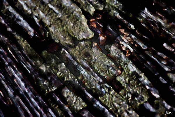 Photograph - Abstract Dock Board by Gina O'Brien