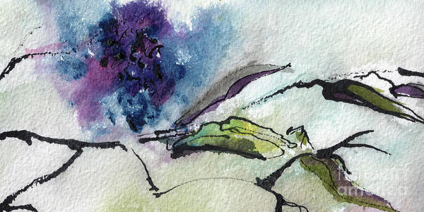 Painting - Abstract Elder Berries Watercolor And Ink Art by Ginette Callaway