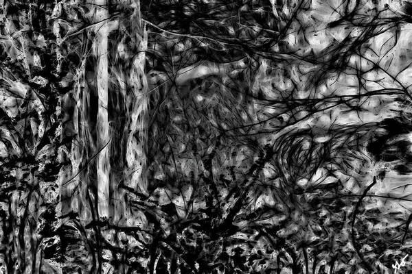Photograph - Abstract Glimpse Of Bayou Meto by Gina O'Brien