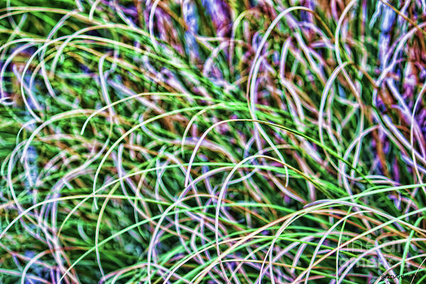 Abstract Grass Art Print