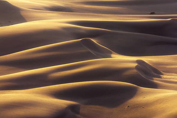 Photograph - Harmony by Khaled Hmaad