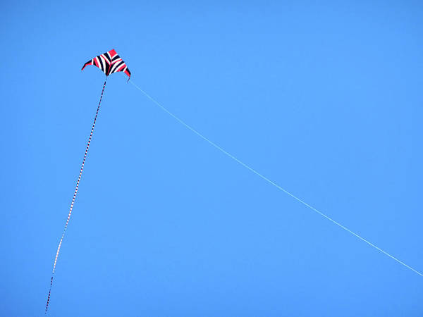 Kite Photograph - Abstract Kite Flying by Marilyn Hunt