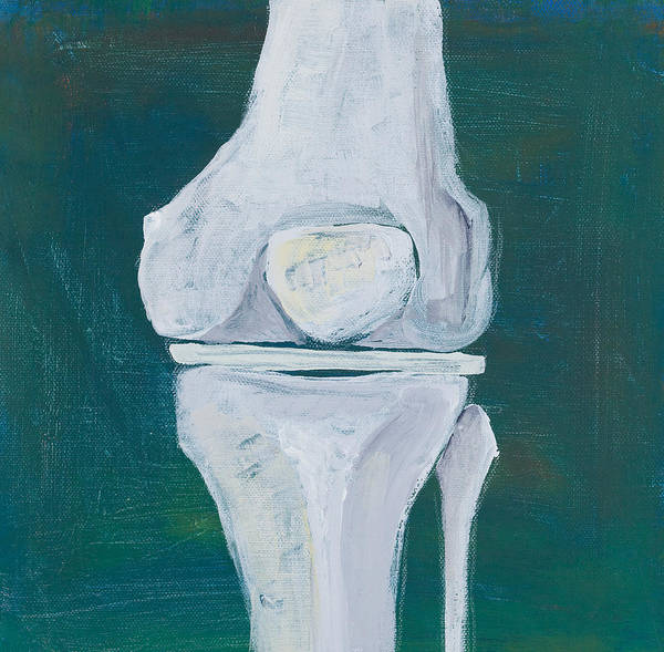 Bone Painting - Abstract Knee by Sara Young