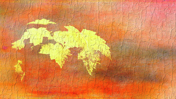 Photograph - Abstract Leaves by Reynaldo Williams