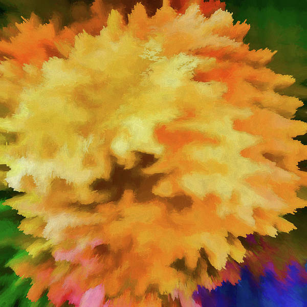 Jewels Digital Art - Abstract - Marigold by Jon Woodhams