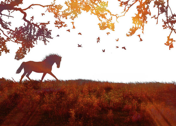 Prancing Horse Photograph - Abstract Modern Minimalist Horse, Tree And Birds Fine Art Print by Stephanie Laird
