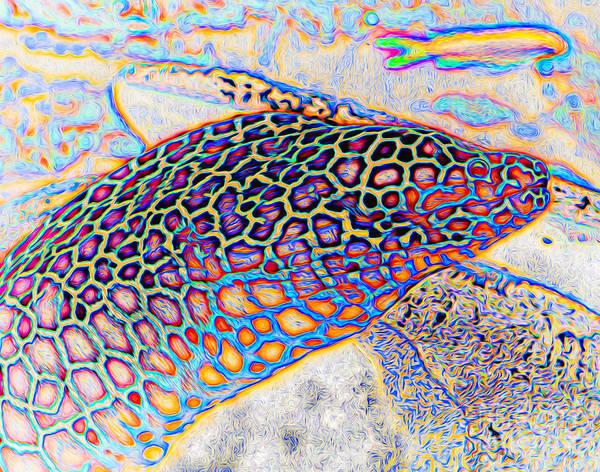 Digital Art - Abstract Moray by Ray Shiu