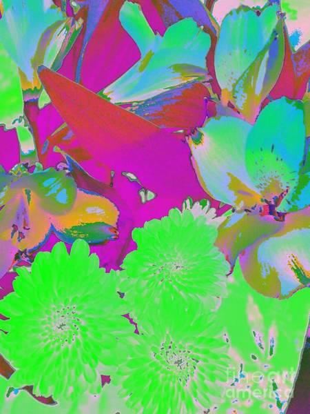 Photograph - Abstract Nature by Jenny Revitz Soper