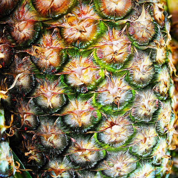 Photograph - Abstract Nature Tropical Pineapple A712078 Square by Ricardos Creations