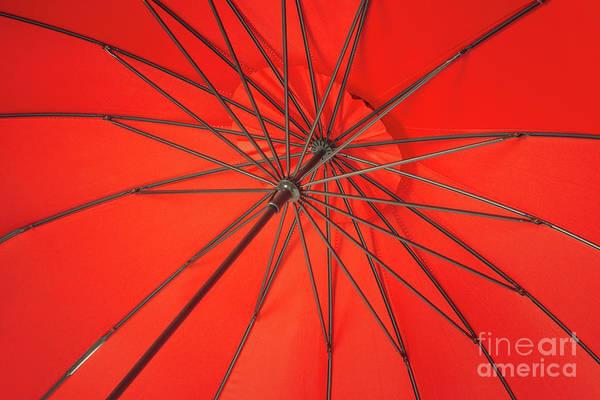 Wall Art - Photograph - Abstract Of Umbrella by Amanda Elwell
