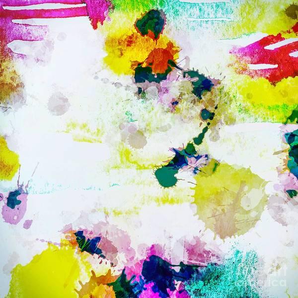 Digital Art - Abstract Paint Splatter by Sheila Wenzel