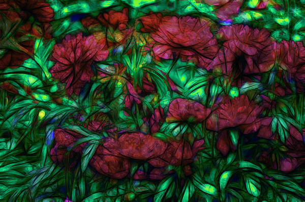 Fleur Digital Art - Abstract Peonies by Jean-Marc Lacombe