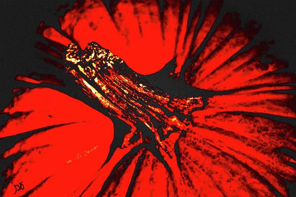 Abstract Pumpkin Stem Art Print