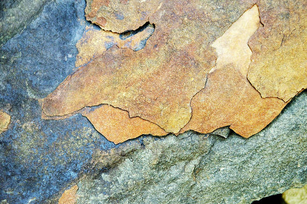 Photograph - Abstract Rock by Christina Rollo