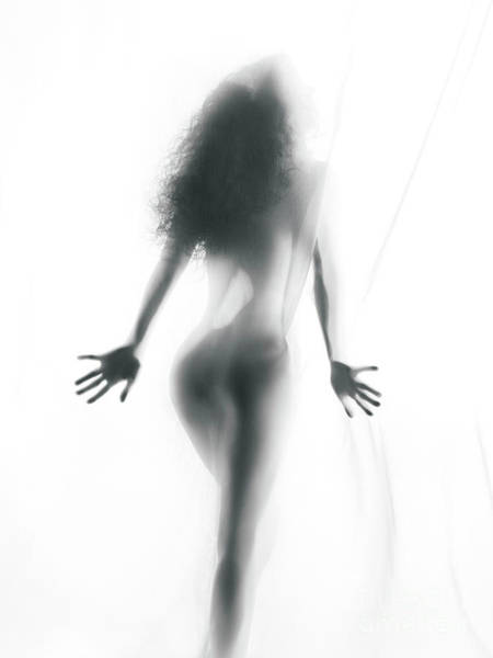 Wall Art - Photograph - Abstract Sensual Woman Silhouette Behind White Sheer Curtain by Oleksiy Maksymenko