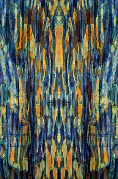 Complementary Colours Photograph - Abstract Symmetry I by David Gordon