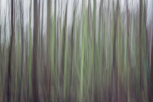 Dim Photograph - Streaks Of Green by Chris Dale