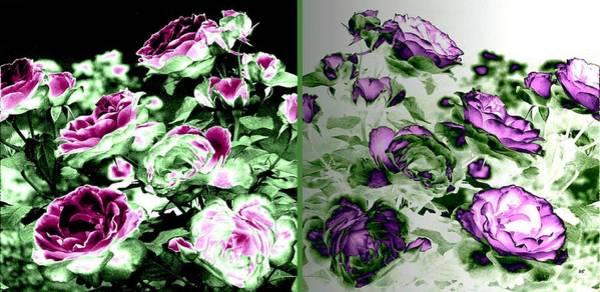 Wall Art - Digital Art - Abstract Vintage Roses by Will Borden