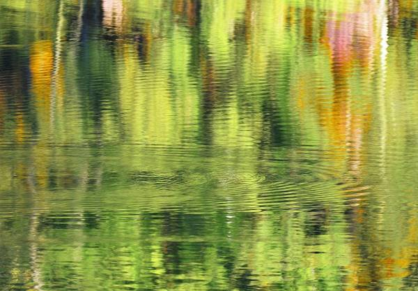 Photograph - Abstract Water by Buddy Scott