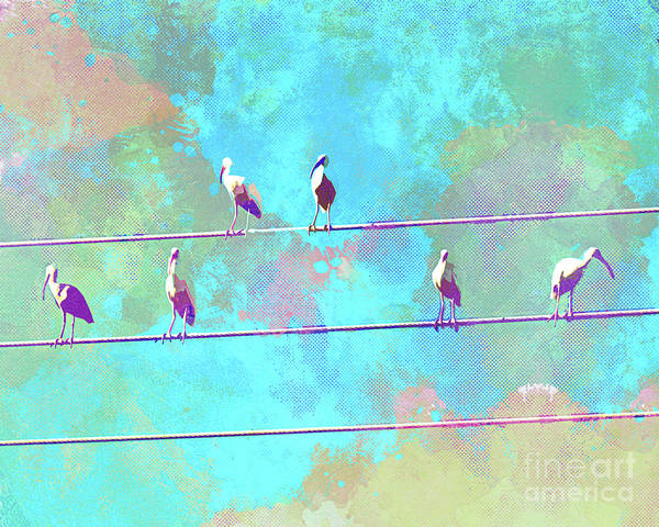 Wire Mixed Media - Abstract Watercolor - Birds Of A Feather I by Chris Andruskiewicz