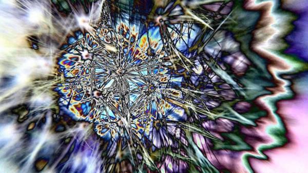 Digital Art - Abstract Wildflower 3 by Belinda Cox