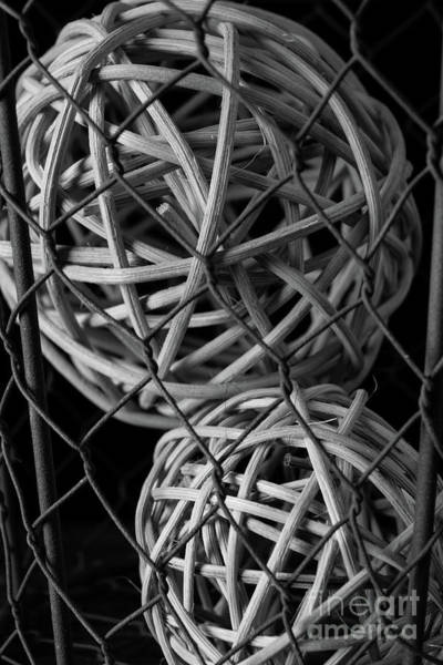 Photograph - Abstract Wire And Spheres by Edward Fielding