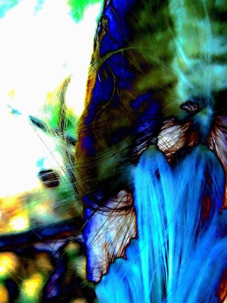Photograph - Abstraction Mw by Beth Akerman
