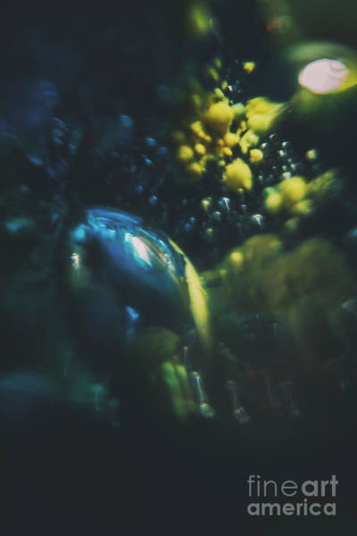 Photograph - Abstraction Of Bubbles 002 by Clayton Bastiani