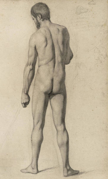 Pastel Pencil Drawing - Academic Nude by Paul Cezanne