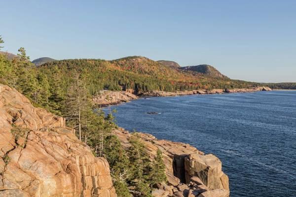 Photograph - Acadia Coastline by Paul Schultz