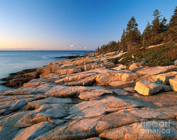 Photograph - Acadia National Park At Sunrise by Adam Jones