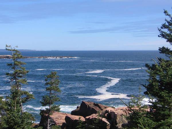 Photograph - Acadia National Park by Karen J Shine