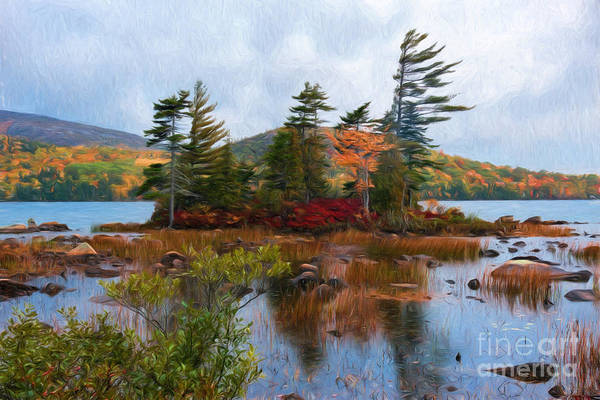 Photograph - Acadia National Park by Sharon Seaward