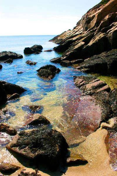 Photograph - Acadia Tide Coming In  by Polly Castor