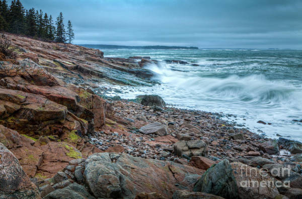 Photograph - Acadian Shore by Susan Cole Kelly