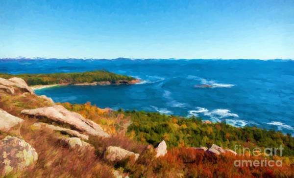 Photograph - Acadia's Sand Point by Sharon Seaward