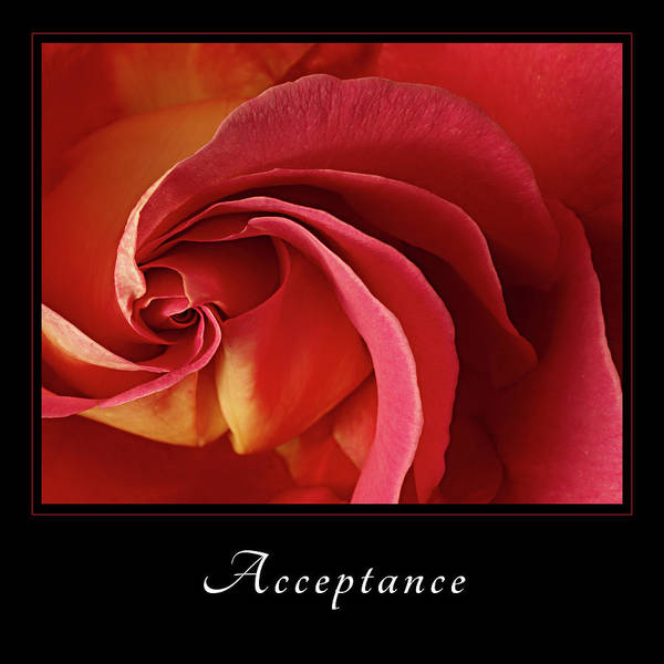 Photograph - Acceptance 1 by Mary Jo Allen